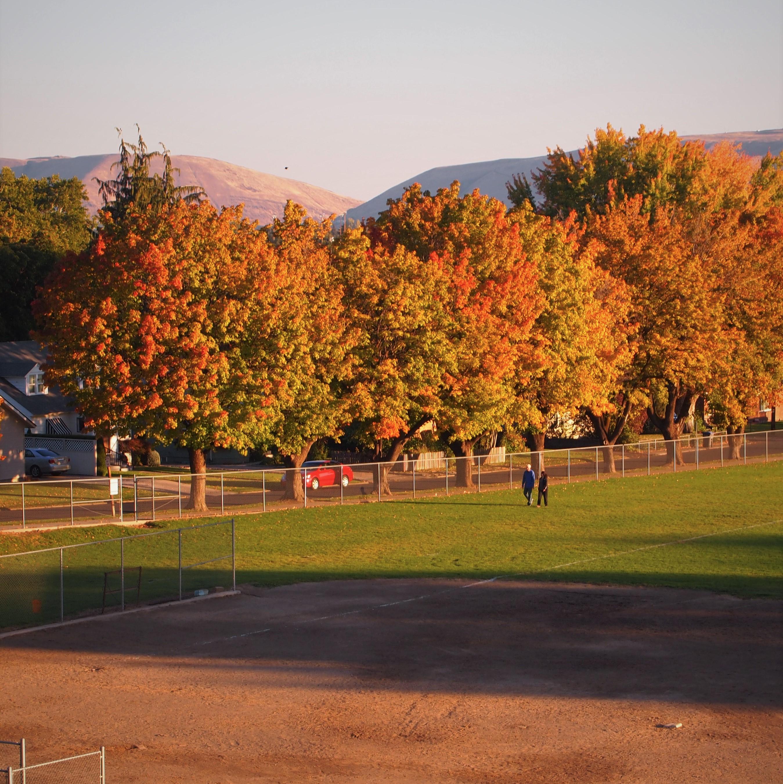 Franklin Park fall colors