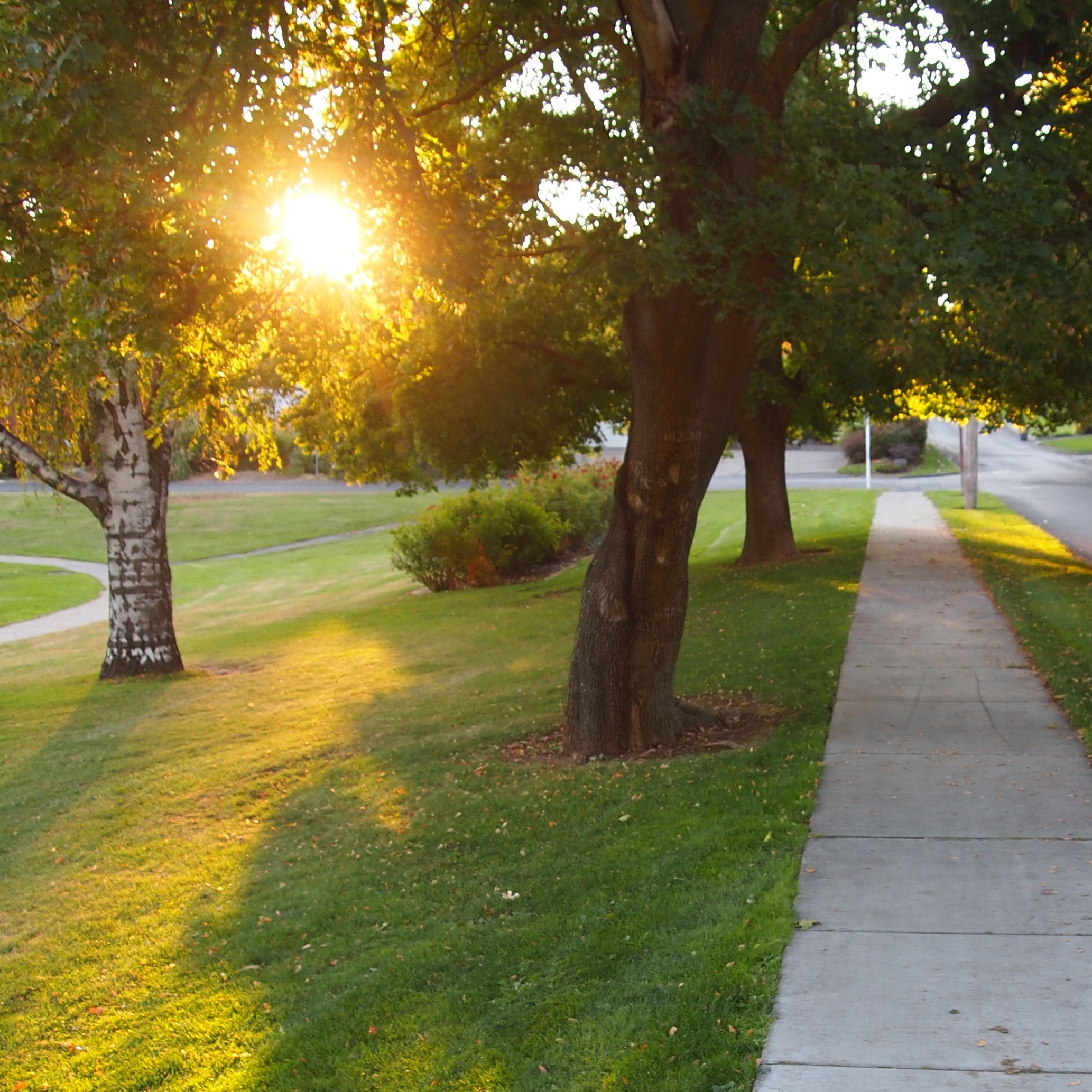 Franklin Park / Chestnut Ave